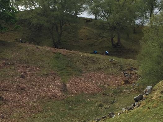 Schiehallion - KoM Climb